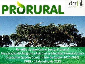 Reunião de agentes do Sector Florestal QCA 2014-2020 - prorural
