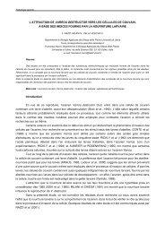 attraktivität der brutzellen für varroa destructor - Apimondia