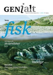 Åpne bladet i PDF-format - Bioteknologinemnda