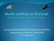 Country Report Thailand RWSR 22-27 April 2012 - seafdec.org.my