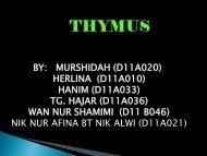 group 3-thymus - UMK CARNIVORES 3