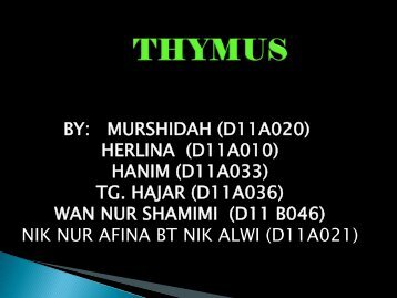 group 3-thymus - UMK CARNIVORES 3