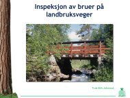 Inspeksjon av bruer på landbruksveger Truls-E. Johnsrud, Skogkurs