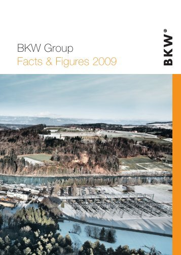 BKW Group Facts & Figures 2009
