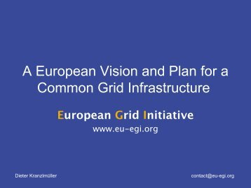 European Grid Initiative - e-IRG