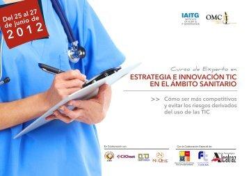 Curso De Experto En Estrategia E Innovación TIC - Institute of Audit ...