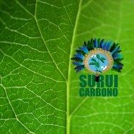 Sequestro de carbono - Ecosystem Marketplace