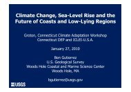 Climate Change, Sea-Level Rise and the Future of Coasts and Low ...