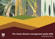 G38 Wheat disease management guide 2009 - HGCA