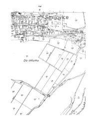 Page 1 Page 2 Kopie katastre'ńnî mapy l Kafenvéín