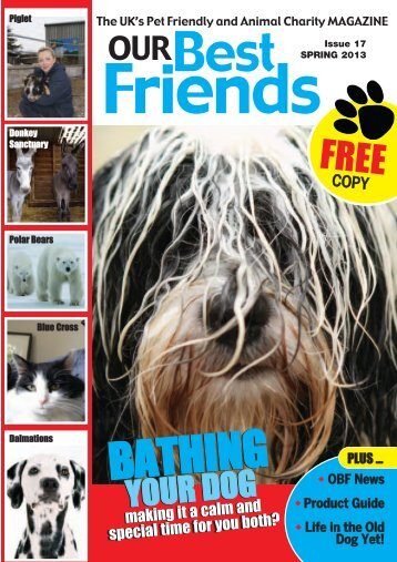 Issue 17 - Spring 2013 - Rescue A Pet