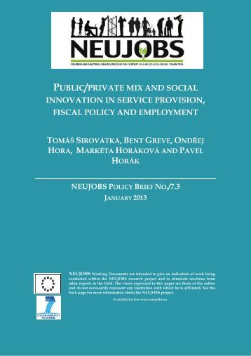 public/private mix and social innovation in service ... - Neujobs