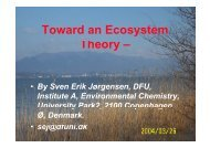 Introduction to Ecosystem Theory