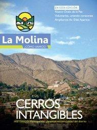 VER - Municipalidad de La Molina
