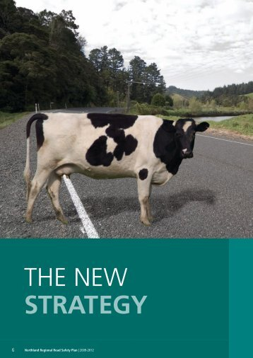 The New Strategy (pdf, 743KB) - Northland Regional Council