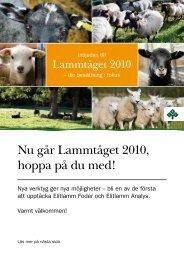 Nu går Lammtåget 2010, hoppa på du med!