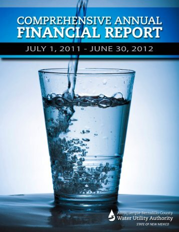 2012 Comprehensive Annual Financial Report (CAFR) - the ...