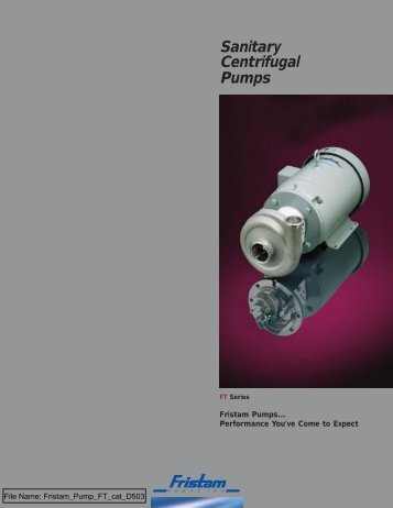 FT - Consolidated Pumps