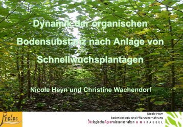 Dynamik der organischen Bodensubstanz nach Anlage ... - FastWOOD