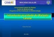 Introdução - Universidade Federal de Pelotas
