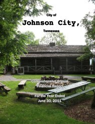 Comprehensive Annual Financial Report (CAFR) - Johnson City