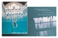Wintry Water Worlds