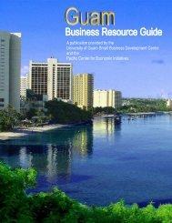Guide Edits 07 07 23 - Pacific Islands Small Business Development ...