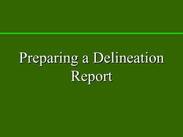 Preparing the Delineation Report