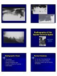 Equine Skull and Spine Equine Skull and Spine Radiography - Page 6