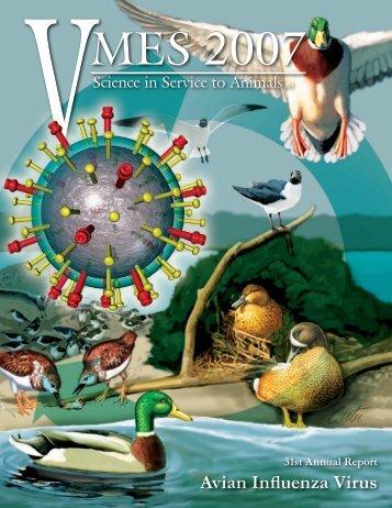 Avian Influenza Virus - University of Georgia College of Veterinary ...
