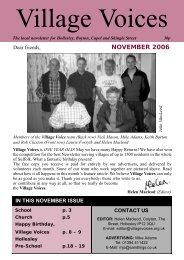 November - Village Voices