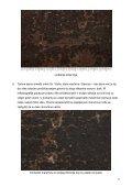 Konzervatorsko-restauratorski radovi na slici Dubrovnik u vlasništvu ... - Page 6