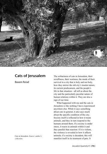 Cats of Jerusalem - Jerusalem Quarterly