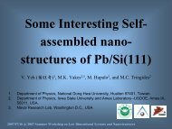 Some Interesting Self-organized nano-structures of Pb/Si(111)