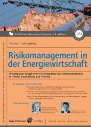 Risikomanagement in der Energiewirtschaft - TAM