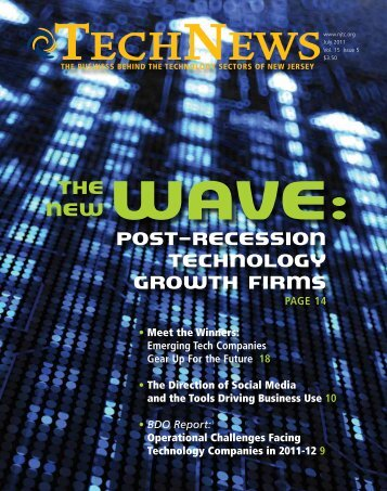 Post-Recession Technology Growth Firms The