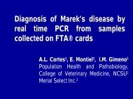 Diagnosis of Marek's disease by real time PCR from samples ...