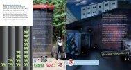 Flyer zur Aktion zum Download - TASSO eV