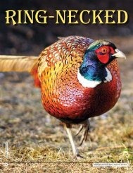 Ring-necked Pheasants - New Hampshire Fish and Game Department