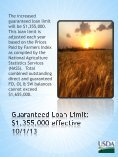 Farm Service Agency – Guaranteed Lender Informational Meeting ... - Page 3