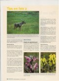 Tips om foto 2 - Gerner Thomsen - Page 2