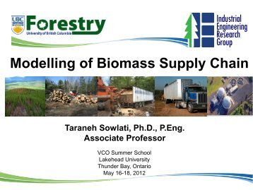 Modelling of Biomass Supply Chain - VCO