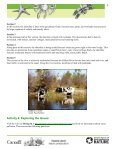 Student Worksheet: River Health and Indicator Species - Page 5