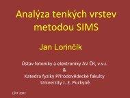 pdf (1,7 MB)
