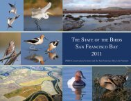 the state of the birds san francisco bay - PRBO Conservation Science