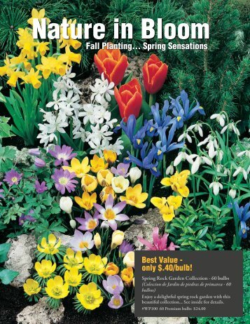 Download Flower Bulb Flyer - ABC Fundraising