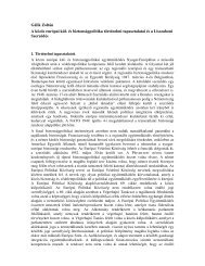 Gálik Zoltán A közös európai kül- és biztonságpolitika ... - Grotius