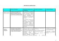 MATRIZ DE PLANIFICACION 1 - Iepala