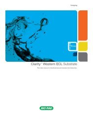Clarity™ Western ECL Substrate - Bio-Rad