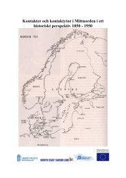 Bilaga 19 Kontakter och kontaktytor i Mittnorden i ett historiskt ...